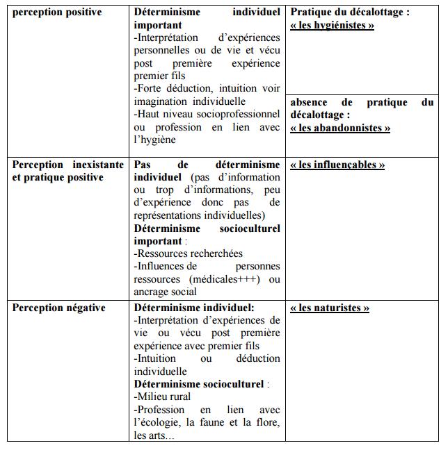 extrait-thèse-pialot
